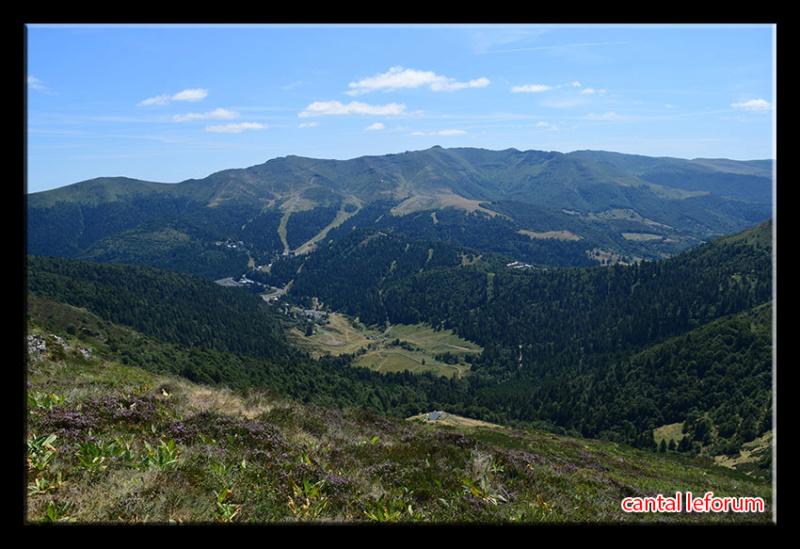 Du Puy Mary au Lioran Dsc_2617