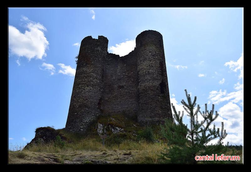 Ruines d'Alleuze Dsc_2624