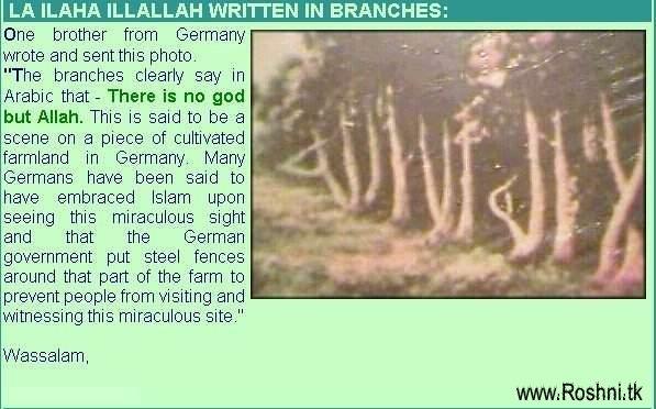 MIRACLES OF ALLAH Allah610