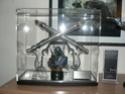 Collection n°16: La petite collec de Roba76... P1090517