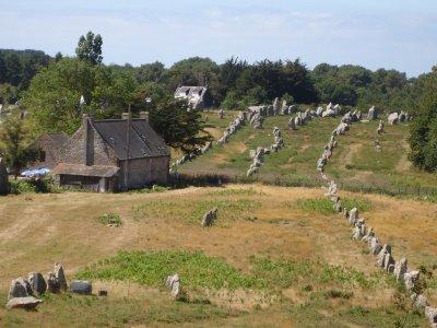 Mégalithes du Morbihan (Carnac) 800px-10