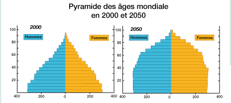 La pyramide d'âge des forumeurs - Page 2 Pyrami10
