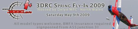 Delyn 3DRC flyin Spring10