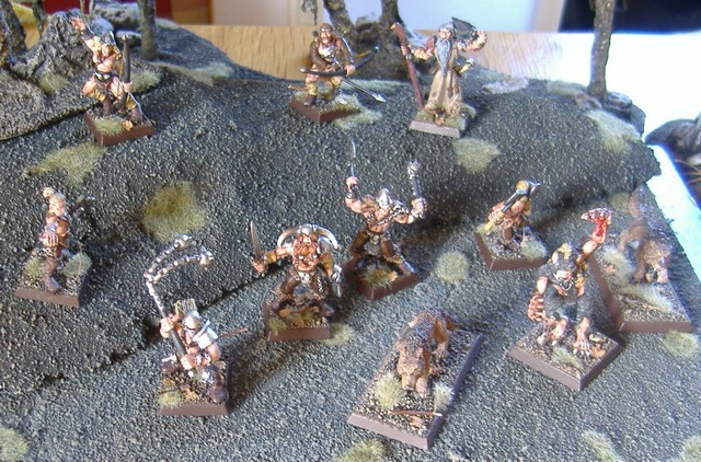Smile's Norse warband Norse_10