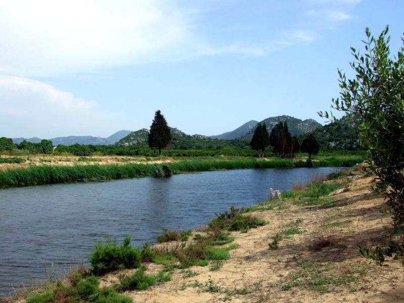 camping rio, delta de la meretva Dscf2011