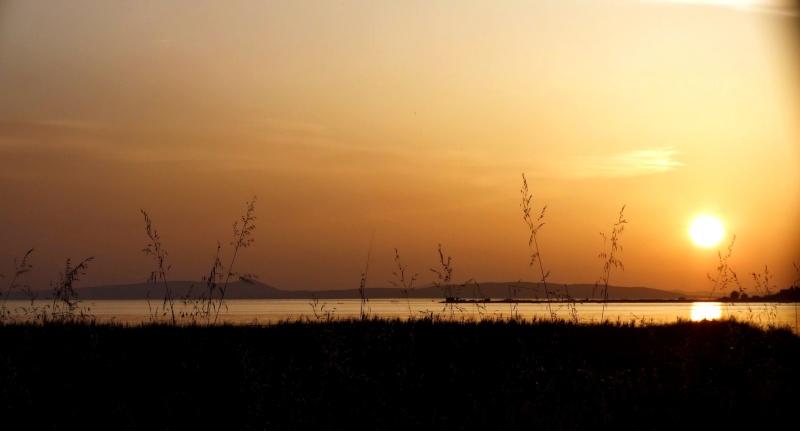 camping rio, delta de la meretva Dscf2012