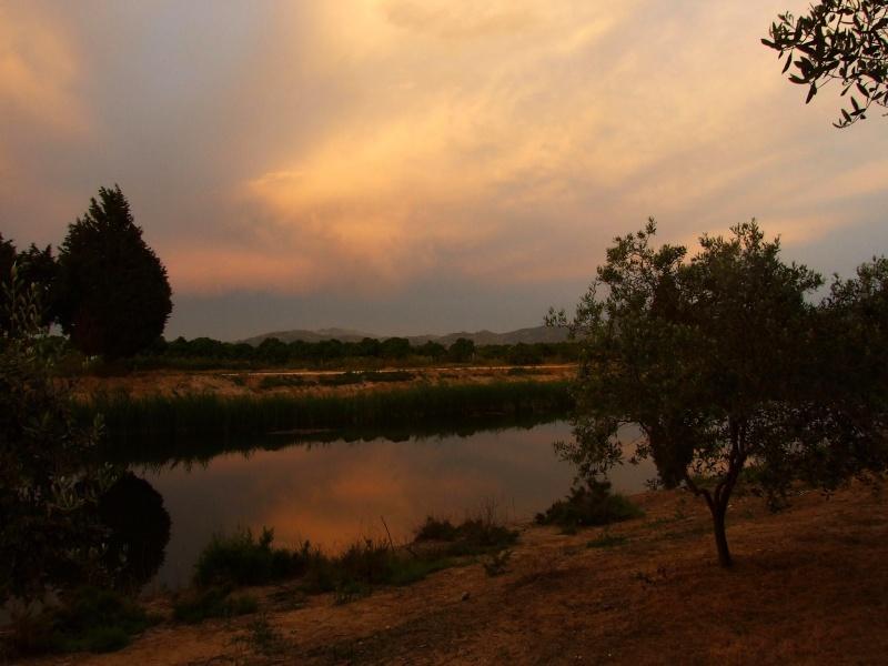 camping rio, delta de la meretva Dscf2013