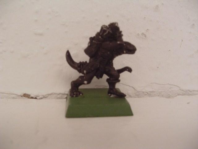 For Sale/Trade: Lizardmen Skink_11
