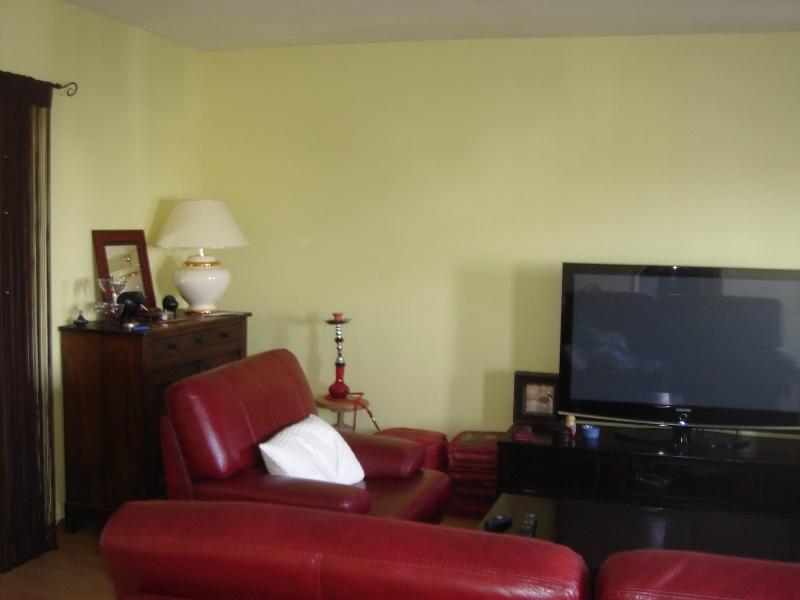 peinture salon cuisine couloir Forum210