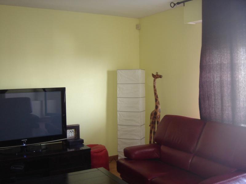 peinture salon cuisine couloir Forum310