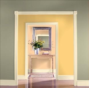 harmoniser peinture, portes et entournures portes... Y210