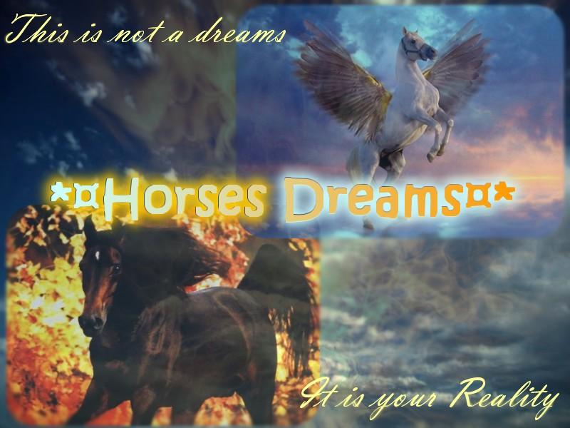 *¤ Horse Dream ¤*