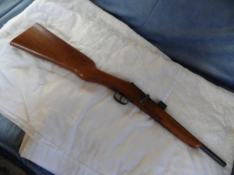 munitions pour petite carabine de jardin avec photos.... Entier10