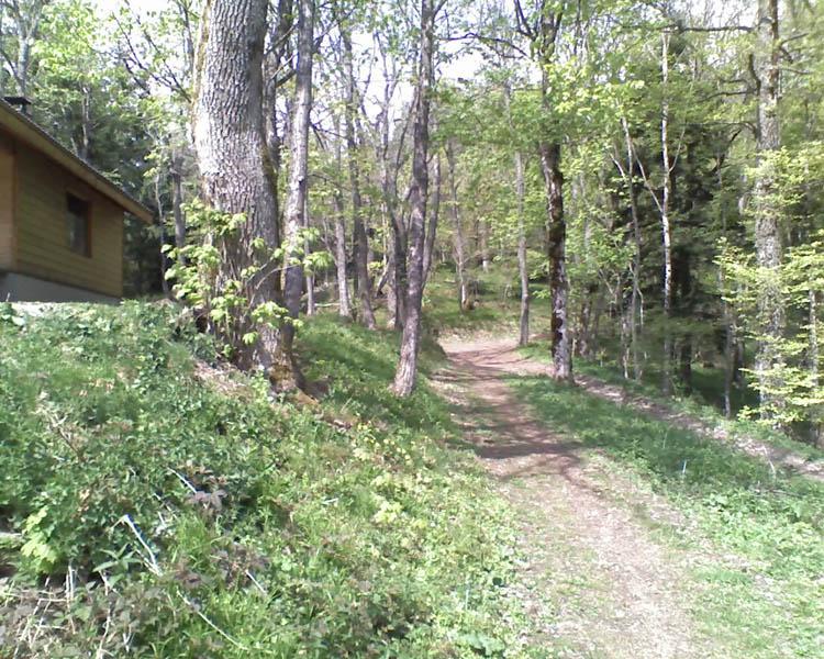 Rando LRVTT 4 du 17 Mai autour du Hartmannswillerkopf Chalet11