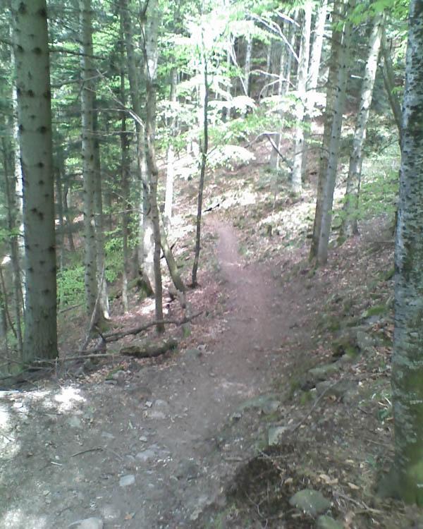 Rando LRVTT 4 du 17 Mai autour du Hartmannswillerkopf Single11