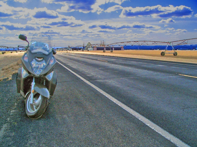 Please submit a picture of your Silver Wing Hwy28313