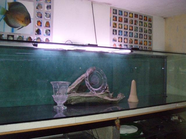 Vente aquarium 1008 litres brut Aqua_110