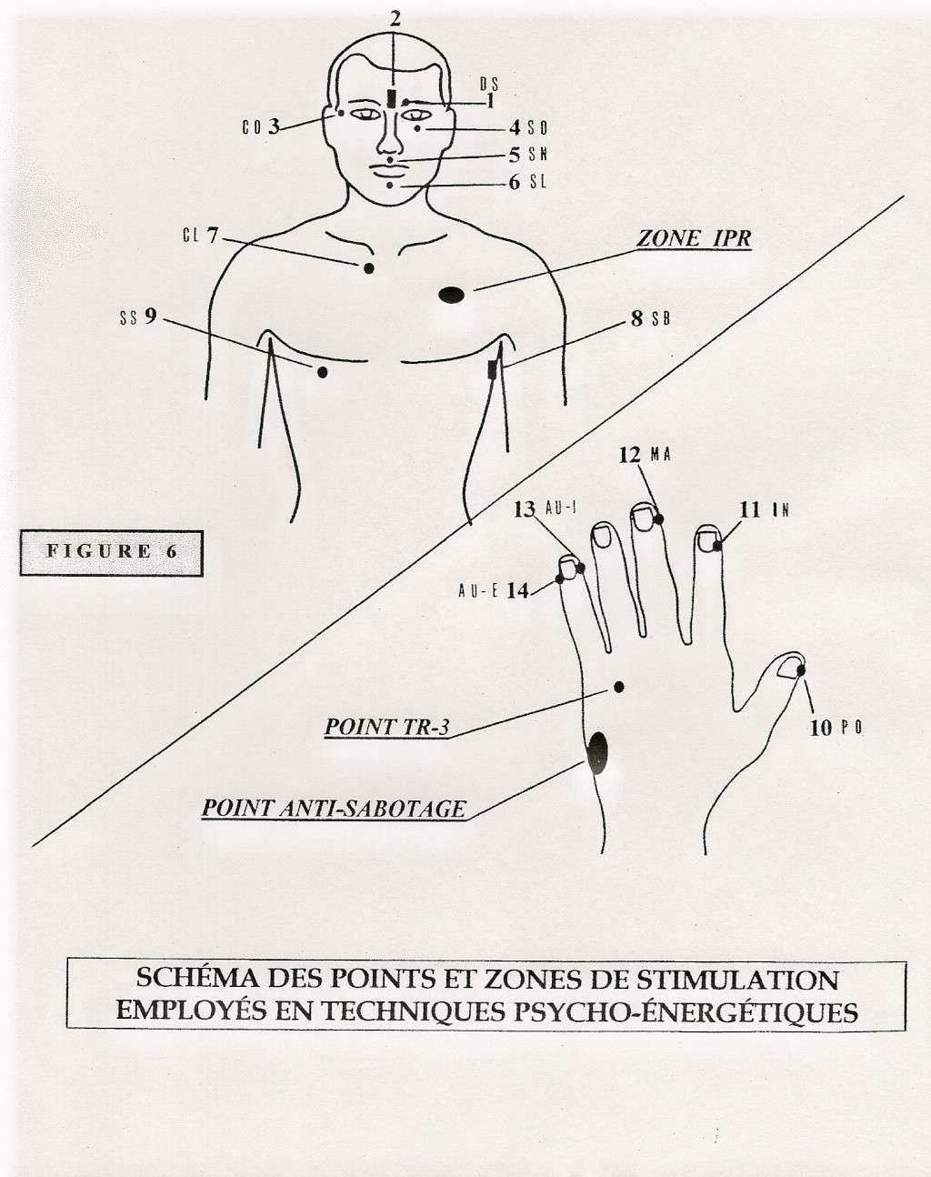 EFT ÉTAPE 3 : ILLUSTRATION ACCOMPAGNANT LE PROTOCOLE À VENIR Eft113