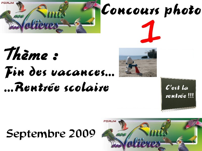 Concours photo : 1 Concou12