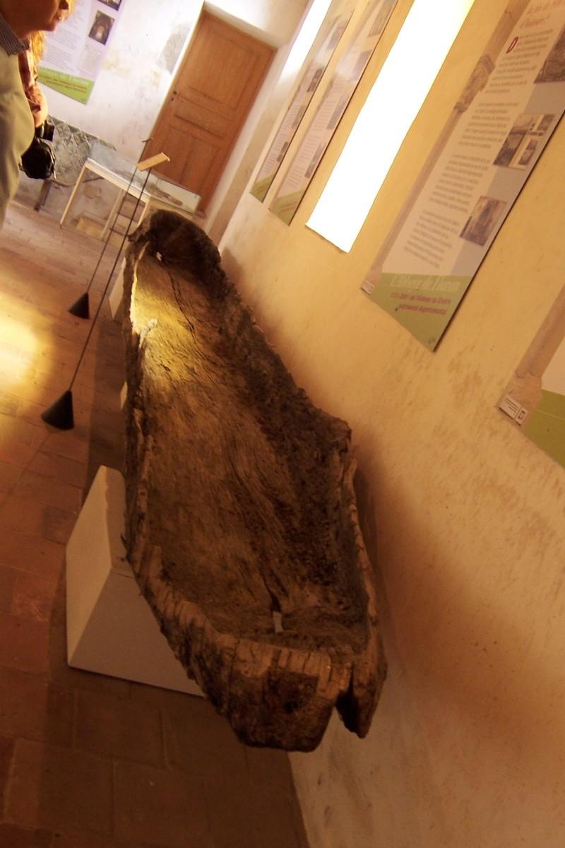 Pour voir des PIROGUES néolithiques - Page 2 100_3417