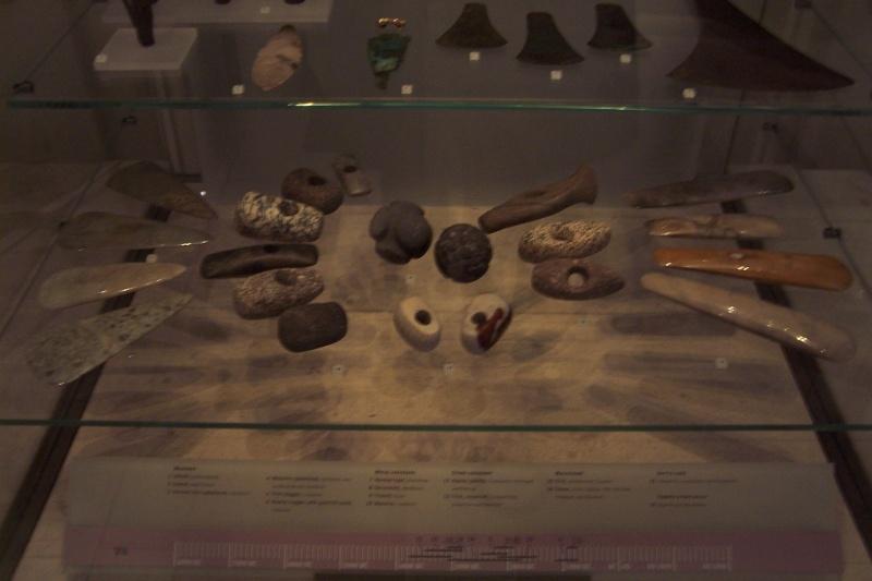 Pour voir des PIROGUES néolithiques 2009_036