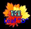 Mome-Made Webkinz Leaf_d10