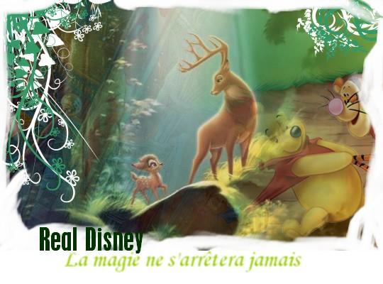 Real Disney