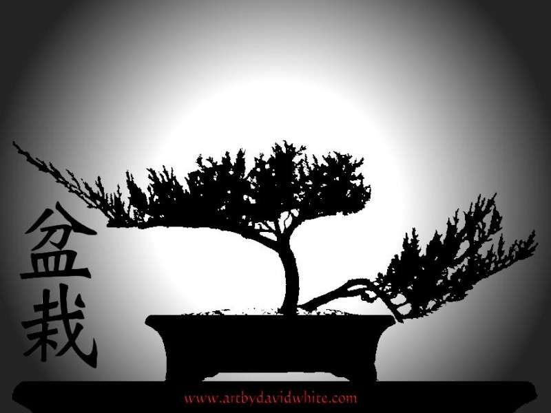 bonsai artwork Bonsai10