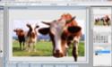 Efeito 3D - Fotografia Visual10