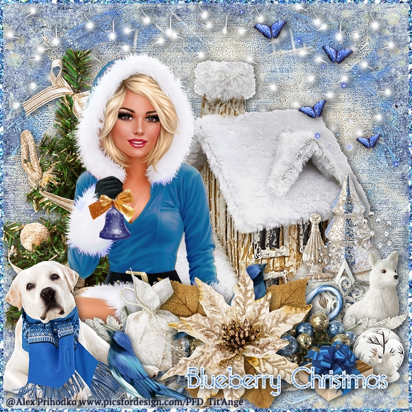 Blueberry Christmas Lady10