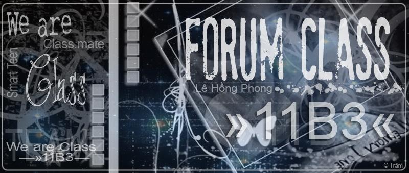 11B3 Forum