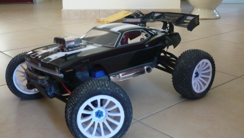 voici ma première carro une hémirevocuda P1040210
