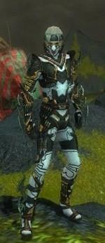 My Elite Armor Sets Gw81711