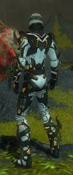My Elite Armor Sets Gw81810