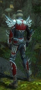 My Elite Armor Sets Gw82310