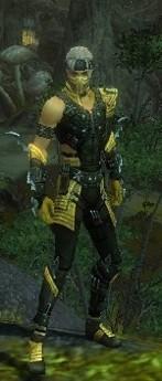 My Elite Armor Sets Gw82510