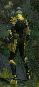 My Elite Armor Sets Gw82610