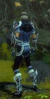 My Elite Armor Sets Gw82710