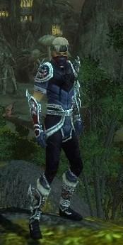 My Elite Armor Sets Gw82810