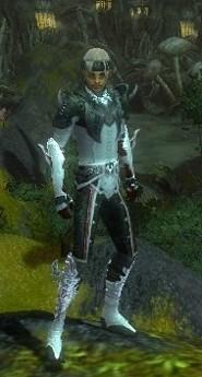 My Elite Armor Sets Gw82910