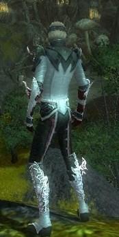 My Elite Armor Sets Gw83010
