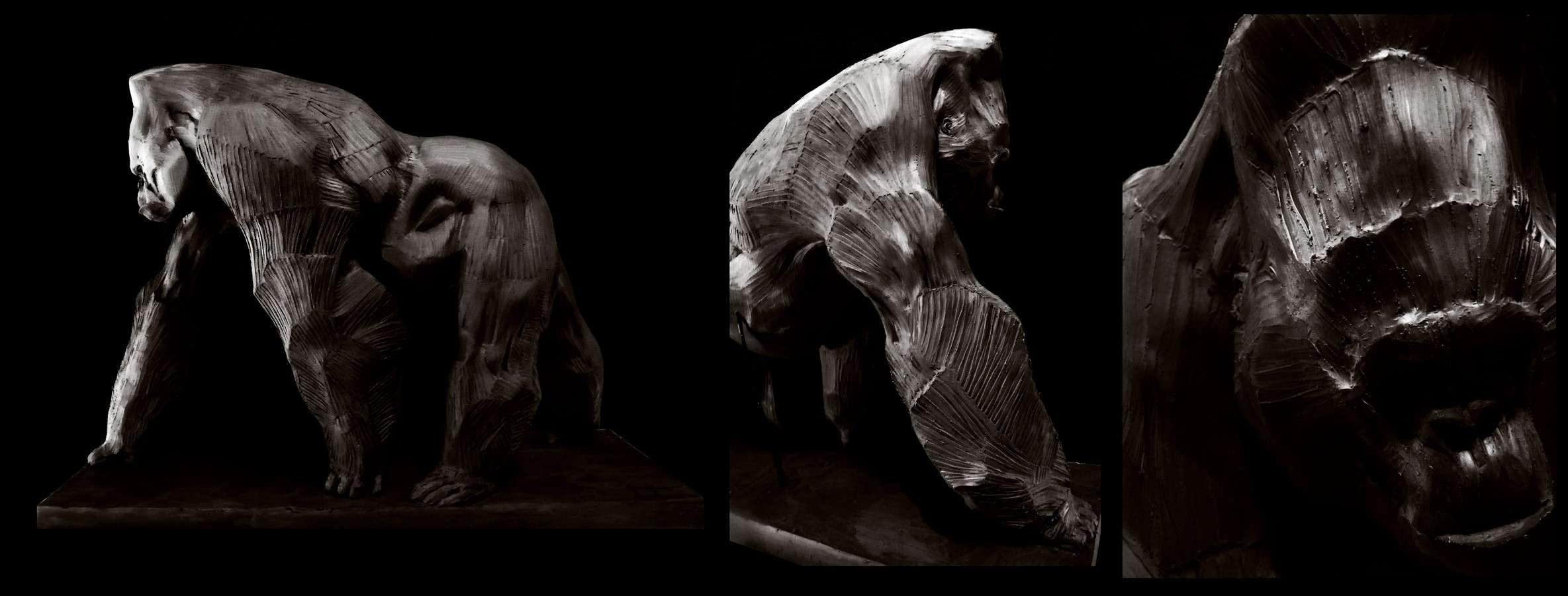 ANIMAL Gorill10