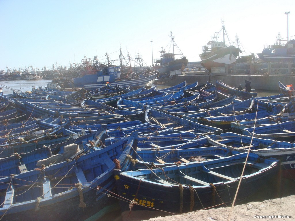 Tarifa ; essaouira; Tanger; 14_ess11