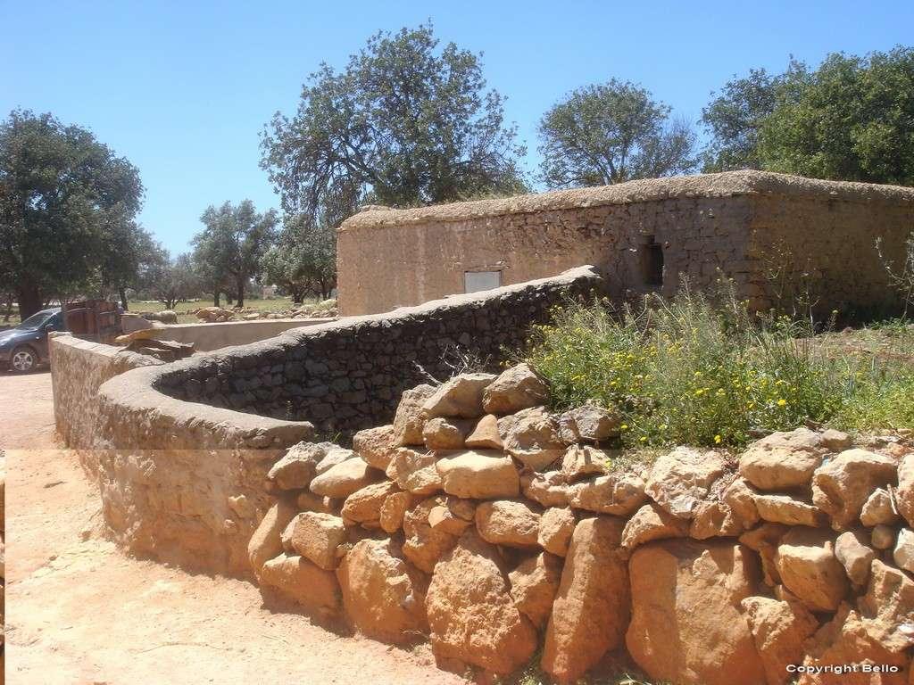 Tarifa ; essaouira; Tanger; 16a_da10