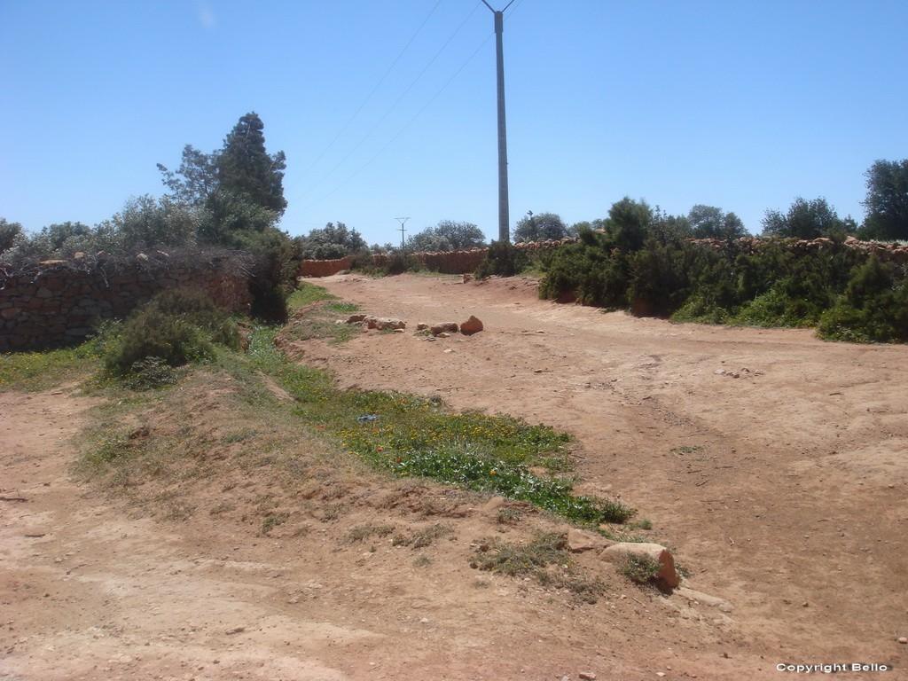 Tarifa ; essaouira; Tanger; 17_ver10