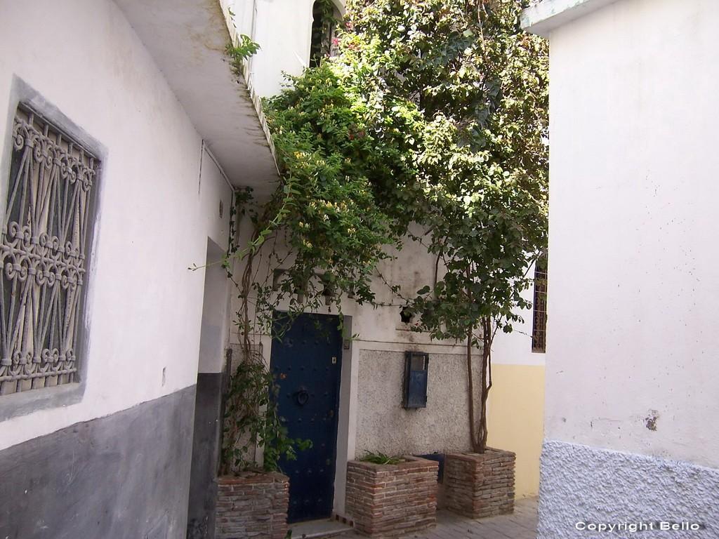 Tarifa ; essaouira; Tanger; 31_cas10
