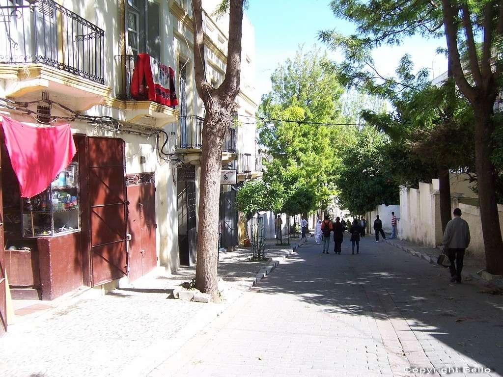 Tarifa ; essaouira; Tanger; 39_tan10