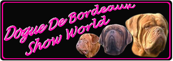 Dogue De Bordeaux Show World