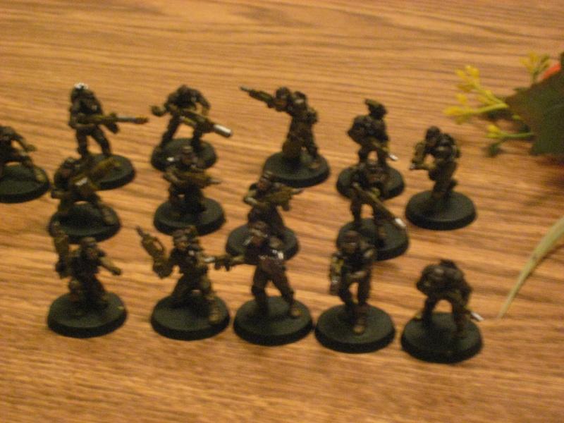 Elysian Project Log (IG Air Cavalry Army) Img_1713