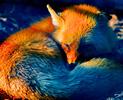 Вышла предварительная версия браузера Firefox 3.6 Ddnd10